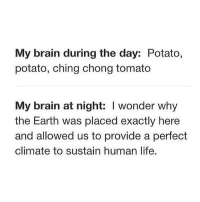 http://iglovequotes.net/: My brain during the day: Potato,  potato, ching chong tomato  My brain at night: I wonder why  the Earth was placed exactly here  and allowed us to provide a perfect  climate to sustain human life. http://iglovequotes.net/