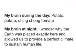 @wealthandfitness do you even ponder? 🤔: My brain during the day: Potato,  potato, ching chong tomato  My brain at night: I wonder why the  Earth was placed exactly here and  allowed us to provide a perfect climate  to sustain human life. @wealthandfitness do you even ponder? 🤔