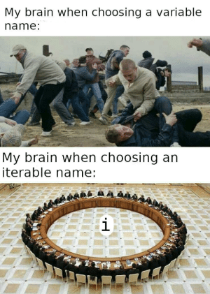 Brain, Name, and Names: My brain when choosing a variable  name:  My brain when choosing an  iterable name:  i For i in variable_names: