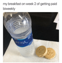 Memes, Breakfast, and 🤖: my breakfast on week 2 of getting paid  biweekly  AFINA Can I get a small loan of a million dollars