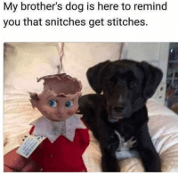 25+ Best Snitches Get Stitches Memes | Snitching Memes