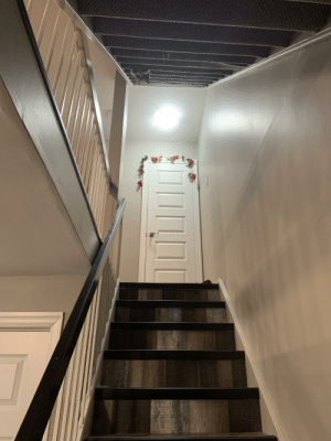 My cat sitting patiently waiting for me to come upstairs so she can start a pawing fight with me.........look closely: My cat sitting patiently waiting for me to come upstairs so she can start a pawing fight with me.........look closely