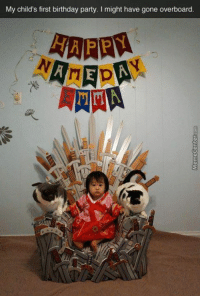 Birthday, Memes, and Party: My child's first birthday party. I might have gone overboard.