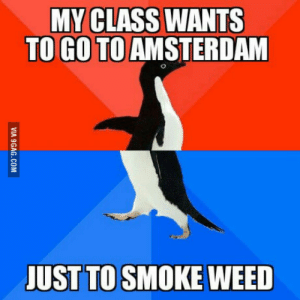 Seriously, nothing better to do there?: MY CLASS WANTS  TO GO TO AMSTERDAM  UST TO SMOKE WEED Seriously, nothing better to do there?
