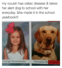 "Bitch, Dogs, and Food: my cousin has celiac disease & takes  her alert dog to school with her  everyday. &he made it in the school  yearbook!!  Kaleigh Buckminster  Memphis Bu <p><a href=""http://controversial-tabloid-story.tumblr.com/post/146962671667"" class=""tumblr_blog"">controversial-tabloid-story</a>:</p>  <blockquote><p><a class=""tumblr_blog"" href=""http://tacodips.tumblr.com/post/146962006389"">tacodips</a>:</p> <blockquote> <p><a class=""tumblr_blog"" href=""http://andrewbelami.tumblr.com/post/146953206240"">andrewbelami</a>:</p> <blockquote> <p><a class=""tumblr_blog"" href=""http://controversial-tabloid-story.tumblr.com/post/146951911707"">controversial-tabloid-story</a>:</p> <blockquote> <p>I still don't understand why you would need a dog to keep you away from wheat. What kinda white nonsense…</p> </blockquote> <p>If that girl ingests food containing gluten during lunch she could get severely sick or even die. It costs $0 to not be a stupid bitch.</p> </blockquote> <p>In some cases people can get ill from even being around too much gluten, and sometimes it takes less than 10 parts per million of gluten to cause an attack. It's important to have a service dog to keep people safe or from making vital mistakes. There are even things like bug spray that can contain gluten, and dogs can alert you to wash it off before it's too late. Here's an article that talks about the importance and usefulness of celiac alert dogs: <a href=""https://celiac.org/blog/2014/12/can-service-dogs-help-sniff-gluten/"">https://celiac.org/blog/2014/12/can-service-dogs-help-sniff-gluten/</a></p> </blockquote>  <p>An informed/appropriate response^</p><p>Thank you!</p></blockquote>  <p>Honey you were the one who ignorantly called the need of a service dog ""white nonsense"". Don't act like anybody owes you politeness.</p>"