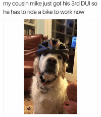 Memes, Work, and Bike: my cousin mike just got his 3rd DUl so  he has to ride a bike to work now