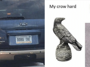 Sun's out, puns out – Fit for Fun: My crow hard  sINDIANA  DORA THE Sun's out, puns out – Fit for Fun