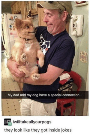 awesomacious:  A special bond: My dad and my dog have a special connection...  iwilltakeallyourpogs  they look like they got inside jokes awesomacious:  A special bond