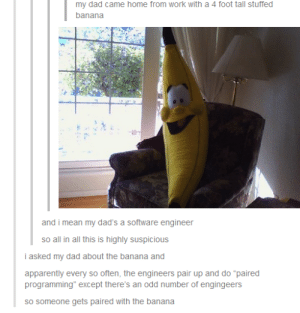 """The Banana Programmer: my dad came home from work with a 4 foot tall stuffed  banana  and i mean my dad's a software engineer  so all in all this is highly suspicious  i asked my dad about the banana and  apparently every so often, the engineers pair up and do """"paired  programming"""" except there's an odd number of engingeers  sO someone gets paired with the banana The Banana Programmer"""