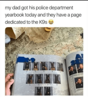 Good bois get they're own page!: my dad got his police department  yearbook today and they have a page  dedicated to the K9s Good bois get they're own page!