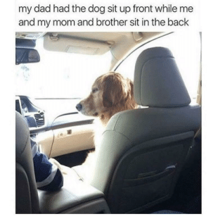 Meirl: my dad had the dog sit up front while me  and my mom and brother sit in the back Meirl