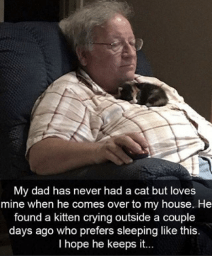 Crying, Dad, and My House: My dad has never had a cat but loves  mine when he comes over to my house. He  found a kitten crying outside a couple  days ago who prefers sleeping like this.  I hope he keeps it.. awesomacious:  Cutenesses overload