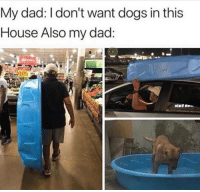 Dad, Dogs, and Memes: My dad: I don't want dogs in this  House Also my dad  145 Tag your dad