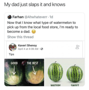 Dad, Food, and Best: My dad just slaps it and knows  Farhan @Ahwhateverr-1d  Now that I know what type of watermelon to  pick up from the local food store, i'm ready to  become a dad.  Show this thread  Kaveri Shenoy  April 4 at 4:39 AM  O+  Tips  THE BEST  GOOD  WATER  SWEFT The truth!