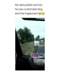 the moment he realized that dog wasn't fucking around 😂😂: My dad pulled over b/c  he saw a stranded dog  and this happened the moment he realized that dog wasn't fucking around 😂😂