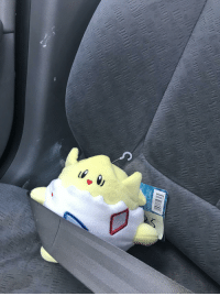 Dad, I Came, and Back: My dad used my car and I came back to my normally dashboard Togepi in a seatbelt.