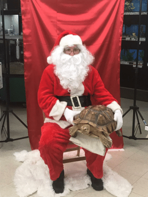 Dad, Funny, and Petsmart: My dad was Santa at our local Petsmart, was not expecting this via /r/funny https://ift.tt/2Qx5NiR
