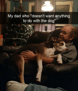 """Dad, Time, and Old: My dad who """"doesn't want anything  to do with the dog"""" A tale as old as time"""