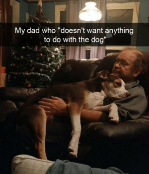 """Dad, Dog, and Who: My dad who doesn't want anything  to do with the dog"""""""