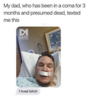 Bitch, Dad, and Dank: My dad, who has been in a coma for 3  months and presumed dead, texted  me this  DANK  arOLoGY  I lived bitch