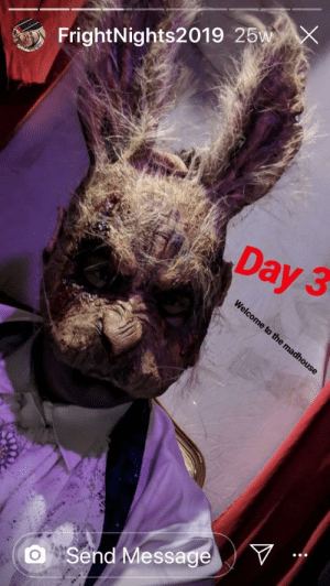My daughter (15) as The Feaster Bunny. Never mind eggs. You'll never find where she hid the bodies.: My daughter (15) as The Feaster Bunny. Never mind eggs. You'll never find where she hid the bodies.