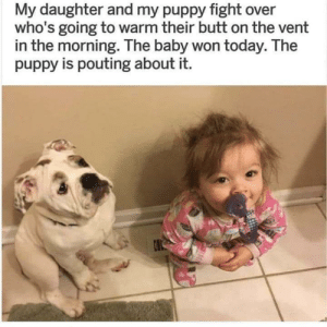 baby 1 - 0 puppy: My daughter and my puppy fight over  who's going to warm their butt on the vent  in the morning. The baby won today. The  puppy is pouting about it.  O baby 1 - 0 puppy