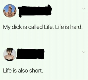 Dank, Life, and Memes: My dick is called Life. Life is hard  Life is also short Little penis jokes by radowanhabib MORE MEMES