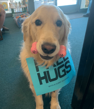 My doctor's therapy dog gives free hugs and souvenirs. Buddy is licensed and everything. He is the best!: My doctor's therapy dog gives free hugs and souvenirs. Buddy is licensed and everything. He is the best!