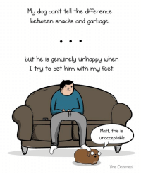 Genuinity: My dog can't tell the difference  between snacks and garbage,  but he is genuinely unhappy when  I try to pet him with my feet  Matt, this is  unacceptable.  The Oatmeal