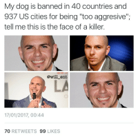 """Memes, 🤖, and Bieber: My dog is banned in 40 countries and  937 US cities for being """"too aggresive"""";  tell me this is the face of a killer.  @will ent  17/01/2017, 00:44  70  RETWEETS  99 LIKES 😂😂😂😂😂lol - - - - - - - 420 memesdaily Relatable dank MarchMadness HoodJokes Hilarious Comedy HoodHumor ZeroChill Jokes Funny KanyeWest KimKardashian litasf KylieJenner JustinBieber Squad Crazy Omg Accurate Kardashians Epic bieber Weed TagSomeone hiphop trump rap drake"""