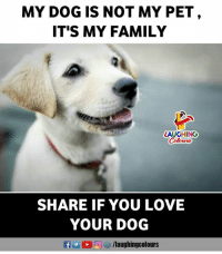 Family, Love, and Indianpeoplefacebook: MY DOG IS NOT MY PET  IT'S MY FAMILY  LAUGHING  SHARE IF YOU LOVE  YOUR DOG