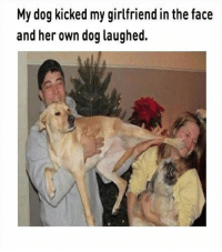 Couples Goals Denied: Family pictures with pet fails...| #Hilarious #Memes #Pictures: My dog kicked my girlfriend in the face  and her own dog laughed. Couples Goals Denied: Family pictures with pet fails...| #Hilarious #Memes #Pictures
