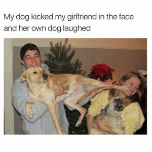 Funny Meme About Dog Vs. Girlfriend: My dog kicked my girlfriend in the face  and her own dog laughed Funny Meme About Dog Vs. Girlfriend