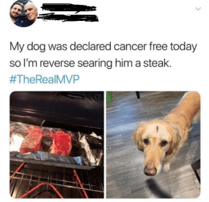 Cancer, Free, and Happy: My dog was declared cancer free today  so I'm reverse searing him a steak.  Im so happy for them!