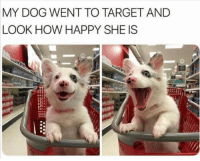 24 Funny Animal Pictures Of The Day #Funny #Picture: MY DOG WENT TO TARGET AND  LOOK HOW HAPPY SHE IS 24 Funny Animal Pictures Of The Day #Funny #Picture