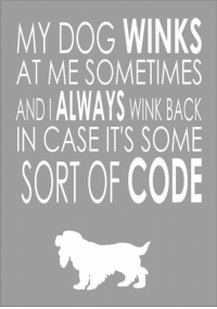Dog's Code: MY DOG WINKS  AT ME SOMETIMES  AND IALWAYS WINK BACK  IN CASE IT'S SOME  SORT OF CODE Dog's Code