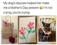 "Crying, Dogs, and Mother's Day: My dog's daycare helped her make  me a Mother's Day present I'm not  crying, you're crying  una O <p>Happy fur mama&rsquo;s day. via /r/wholesomememes <a href=""https://ift.tt/2rF3YTh"">https://ift.tt/2rF3YTh</a></p>"