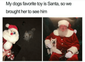 This is so cute!! Not too long for Christmas: My dogs favorite toy is Santa, so we  brought her to see him This is so cute!! Not too long for Christmas