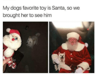 Santa, Toys, and Dank Memes: My dogs favorite toy is Santa, so we  brought her to see him