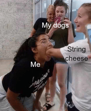 One bite challenge: My dogs  String  cheese  Ме  nie  ece One bite challenge