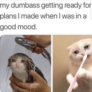 Meirl: my dumbass getting ready for  plans I made when I was in a  good mood. Meirl
