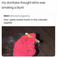Elmo getting lit 😂: my dumbass thought elmo was  smoking a blunt  Metri @meechy2geechy  how i gotta smoke fuckin w this colorado  weather Elmo getting lit 😂