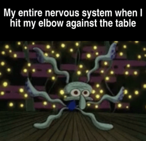 Table, Elbow, and System: My entire nervous system when I  hit my elbow against the table Makes me uncomfortable