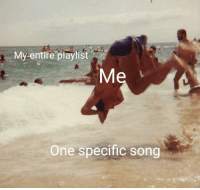 Irl, Me IRL, and Song: My entire playlist  One specific song me_irl