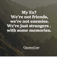 25 Best Memories Quotes Memes In Your Life Memes Memory Quote Memes