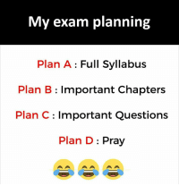 Plan B, Questions, and Chapters: My exam planning  Plan A : Full Syllabus  Plan B: Important Chapters  Plan C: Important Questions  Plan D: Pray