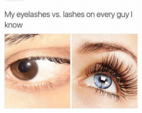 My eyelashes vs. lashes on every guy l  know YES. Why does this happen?? TBIRD has way better eyelashes than me!   ~Pinks