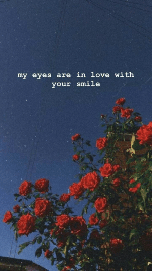 Love, Smile, and In Love: my eyes are in love with  your smile