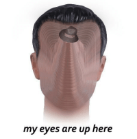 """Reddit, Com, and Src: my eyes are up here <p>[<a href=""""https://www.reddit.com/r/surrealmemes/comments/8fp556/please_refer_politely/"""">Src</a>]</p>"""