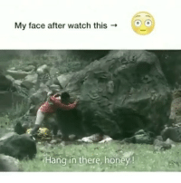 Memes, Watch, and 🤖: My face after watch this  Hang in there, honey! Simak sampe habis